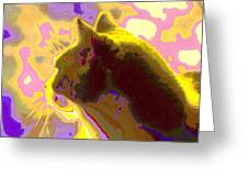 Curiosity And The Cat 2 Greeting Card