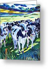 Curiosity Cows Original Sold Prints Available Greeting Card