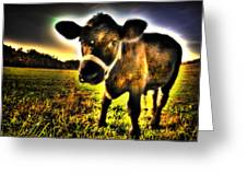 Curious Calf Dark Greeting Card