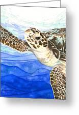 Curious Sea Turtle Greeting Card