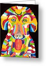 Curly Colorful Retriever Greeting Card