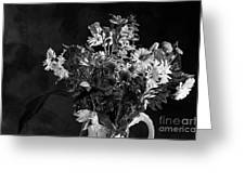 Cut Flowers In Monochrome Greeting Card