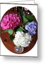 Cut Hydrangeas Greeting Card