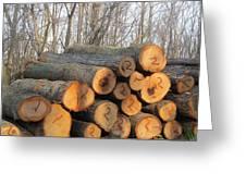 Cut Logs Greeting Card