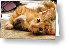 Cute Be Mine Greeting Card
