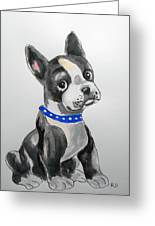 Boston Terrier Wall Art Greeting Card