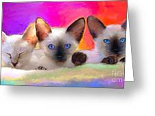 Cute Siamese Kittens Cats  Greeting Card