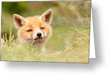 Cutie Face _red Fox Kit Greeting Card