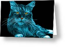 Cyan Maine Coon Cat - 3926 - Bb Greeting Card