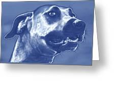 Cyanotype Dog Greeting Card