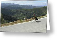 Cycling In Greek Mountains Greeting Card