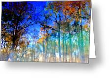 Cypress Fog 3 Greeting Card