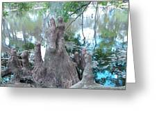 Cypress Knee Family Greeting Card
