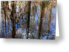 Cypress Reflection Nature Abstract Greeting Card