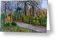 Cypress Trail At Loxahatchee Greeting Card