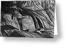 Cypress Tree Abstract Greeting Card