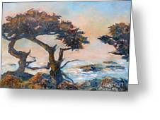 Cypress Tree Coast Greeting Card