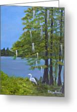 Cypress Trees At Lake Marion Greeting Card
