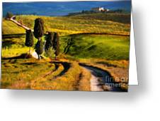 Cypresses Of Toscany Greeting Card
