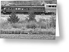 Cyrus K  Holliday Private Rail Car Bw Greeting Card