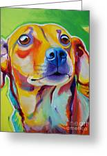 Chiweenie Little Dog Painting By Alicia Vannoy Call