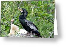 Dad And Chick Greeting Card