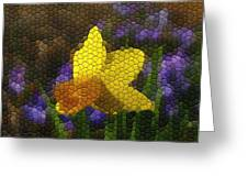 Daffies And Blue Chionodoxas Greeting Card