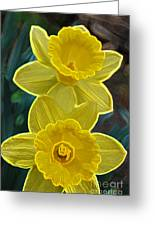 Daffodil Duet By Jrr Greeting Card
