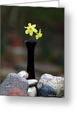 Daffodils In Black Amethyst 2 Greeting Card