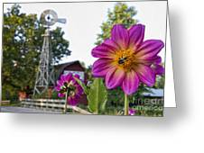 Dahlia Bee And Windmill Greeting Card