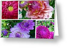 Dahlia Best Collage Greeting Card