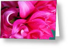 Dahlia Droplets Greeting Card