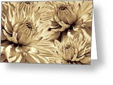 Dahlia Flowers Bouquet Sepia Greeting Card