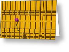 Dahlia In Yellow Gate Greeting Card