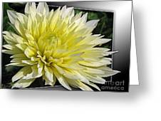 Dahlia Named Canary Fubuki Greeting Card