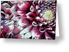 Dahlias In Pastel Greeting Card