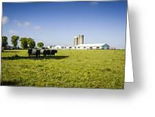 Dairy Farm Greeting Card