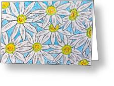 Daisies Daisies Greeting Card