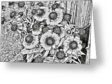 Daisies In Relief Greeting Card