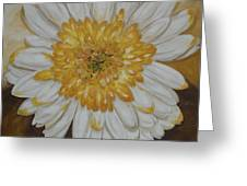 Daisy-2 Greeting Card