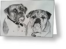 Daisy And Duke Greeting Card