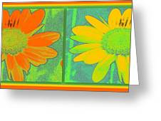 Daisy Collage Yellow Orange Greeting Card