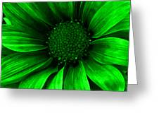 Daisy Daisy Neon Green Greeting Card