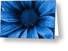 Daisy Daisy Pure Blue Greeting Card