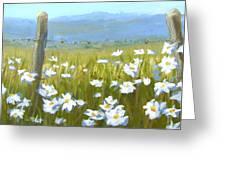 Daisy Dance Greeting Card