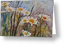 Daisy Dreams Greeting Card