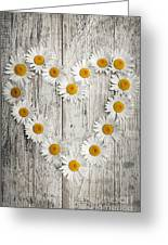 Daisy Heart On Old Wood Greeting Card
