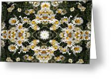 Daisy Kaleido 1 Greeting Card