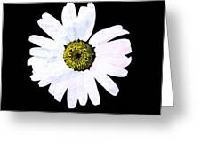 Daisy On Black Greeting Card