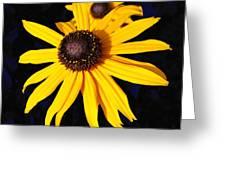 Daisy On Dark Blue Greeting Card